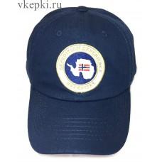 Бейсболка Napapijri синяя арт. 2300